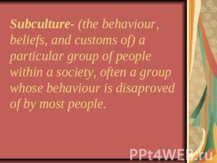 Subculture- (the behaviour, beliefs, and customs of) a particular group of peopl