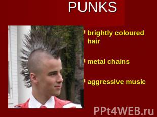 PUNKS brightly coloured hairmetal chainsaggressive music