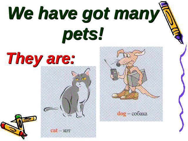 We have got many pets!They are: