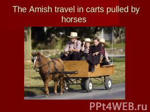 The Amish travel in carts pulled by horses