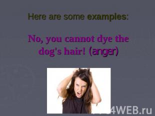 Here are some examples:No, you cannot dye the dog's hair! (anger)