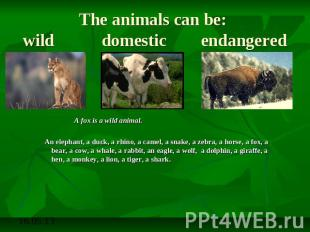 The animals can be: wild domestic endangered A fox is a wild animal.An elephant,