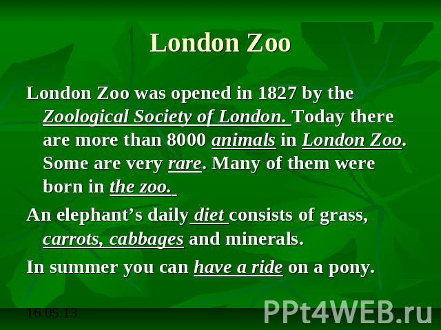 London Zoo London Zoo was opened in 1827 by the Zoological Society of London. Today there are more than 8000 animals in London Zoo. Some are very rare. Many of them were born in the zoo. An elephant's daily diet consists of grass, carrots, cabbages …