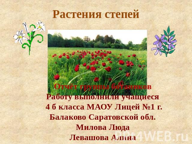 Доклад на тему растения степи 4401